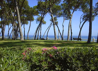 Beachfront Penthouse appartement te koop - Golden Mile - Marbella